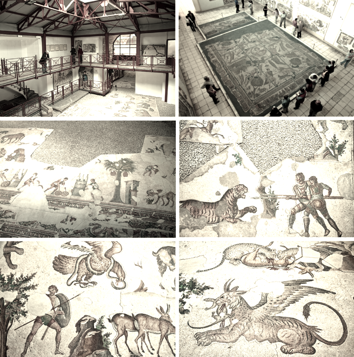 Museum Mosaics Istanbul The Museum Houses Mosaics From